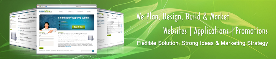 Web Application Development Design Hosting Search Engine Optimization (SEO) Solutions Company New Delhi, India